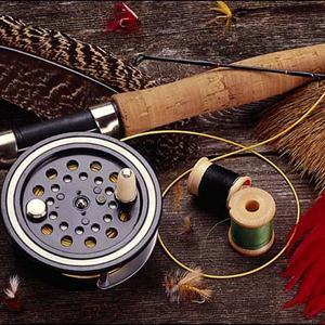 Охотничьи и рыболовные магазины Сокола