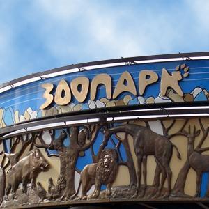 Зоопарки Сокола